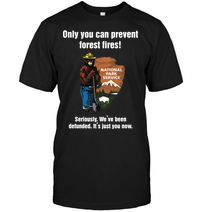 Only You Can Prevent Forest Fires National Park Service Seriously