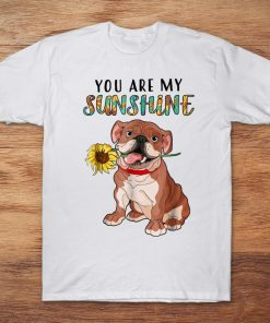 You Are My Sunshine Boxer With Sunflower