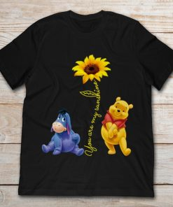 Sunflower Pooh And Eeyore You Are My Sunshine
