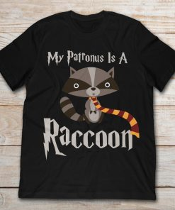 My Parronus Is A Raccoon