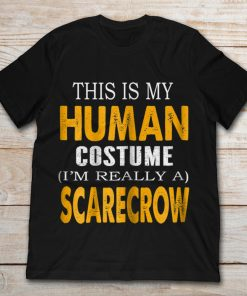 This Is My Human Costume I'm Really A Scarecrow