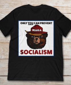 Only You Can Prevent Maga Socialism