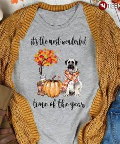 It's The Most Wonderful Time Of The Year Anatolian Shepherd
