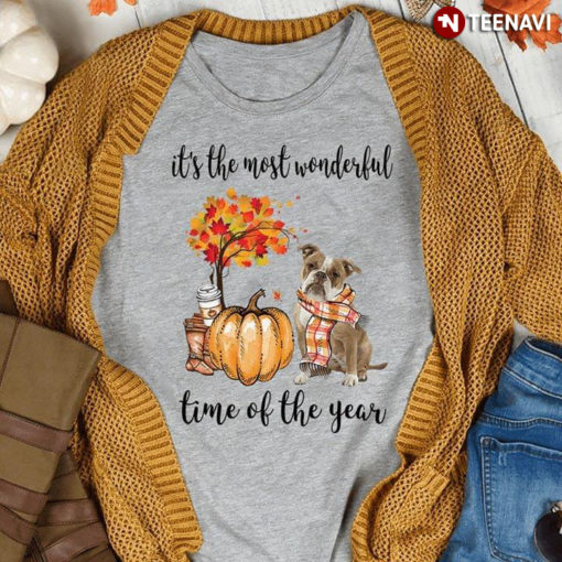 It's The Most Wonderful Time Of The Year Old English Bulldog